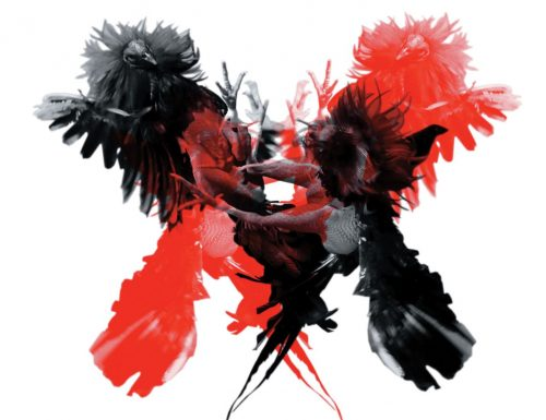 """*CLASSICO* Kings of Leon """"Only by the night"""" -2008-"""